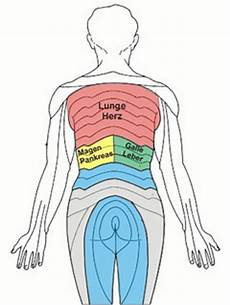schmerzen rechte seite rippen beschwerden der brustwirbels 228 ule klaus radloff die