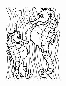free printable seahorse coloring pages for