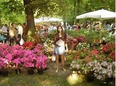fiera dei fiori fiera dei fiori foto di parma provincia di parma