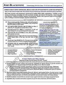 executive resume sle chief executive officer executive resume ceo resume sle real