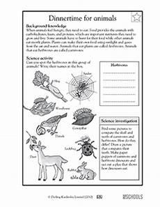animal science worksheets for high school 14040 3rd grade 4th grade science worksheets animal dinnertime greatschools