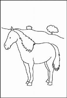 ausmalbilder pferde hindernis zeichnen und f 228 rben