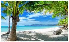 Malvorlagen Meer Und Strand Palmen Meer Strand Karibik Wandtattoo Wandsticker