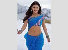 shruti hassan sexy saree navel tight skirt back pose asset