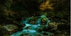 elfenwald foto bild landschaft jahreszeiten herbst
