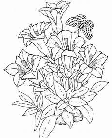 realistic flowers coloring pages рисунки цветов рисунки для раскрашивания