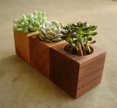 piante grasse in vaso 16 minimalistic handmade wooden planter designs garden