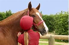 journ 233 e du cheval actualit 233 s f 233 d 233 rales accueil