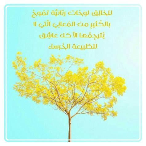 Amani Mohamed