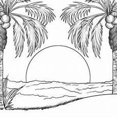malvorlagen palmen strand