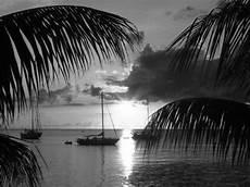 noir et blanc 69bis images en noir et blanc page 9