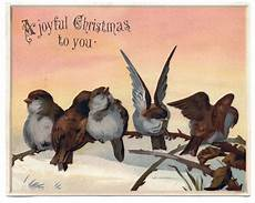 14 christmas birds images vintage charm the graphics