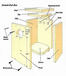 screech owl house plans nick birdhouse plans for owls