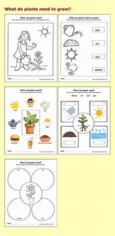 science worksheets for nursery class 12314 needs of plants kindergarten worksheets preschool parenting science children plants