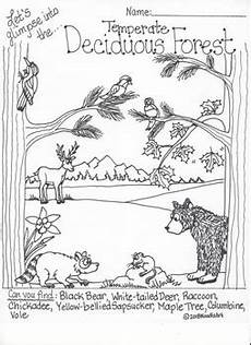 coloring pages ecosystem animals 16973 ecosystem interactive coloring pages by noodlzart tpt
