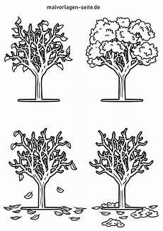 malvorlage baum 4 jahreszeiten pflanzen kostenlose
