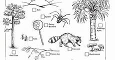 plants as producers worksheets 13617 decomposers worksheets for archbold biological station ecological research