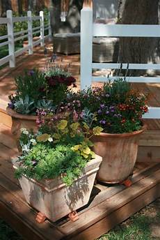 the polished pebble container gardening pretty perennials