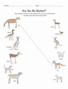 baby animals names worksheet education