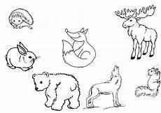 Malvorlagen Tiere Zum Ausdrucken Kostenlos Ausmalbilder Waldtiere Kostenlos Malvorlagen Zum