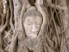 Die Tempelruinen Ayutthaya 171 Bangkok 360