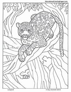 in the trees book two 171 animal coloring pages for