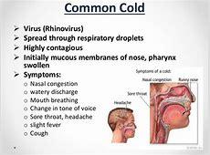 how to treat rhinovirus