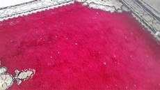 tapis nettoyage à sec nettoyage tapis 224 domicile 224 sec maroc