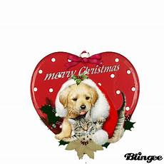 merry christmas pets for card design picture 130716242 blingee com