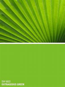sherwin williams paint color outrageous green sw 6922 simmering summer summer paint