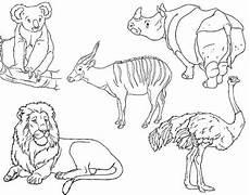 Zootiere Malvorlagen Text Zootiere Malvorlagen F Kinder Aiquruguay