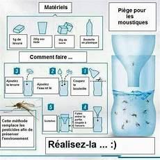 anti moustique efficace naturel anti moustique naturel carabiens le forum