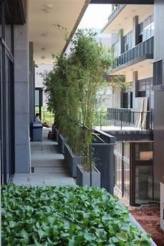 Balkon Sichtschutz Ideen - bambus als balkon sichtschutz pflanzkuebel idee modern