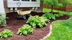garten mit rindenmulch anlegen how to apply mulch properly garden maintenance tips