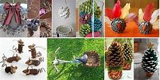 10 creative things to do with pine cones home design