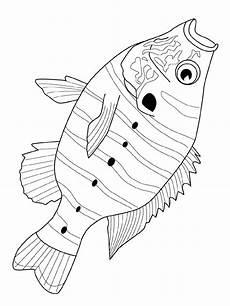 Malvorlagen Fische Jung Fisch Malvorlagen Fish Coloring Page Animal Coloring