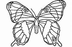 Ausmalbilder Zum Ausdrucken Kostenlos Schmetterlinge Ausmalbilder Schmetterling Zum Ausdrucken