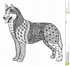 Ausmalbilder Hunde Husky Zentangle Hund Des Sibirischen Huskys Stilisierte Vector