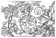 absolut exotic fruits by irina vinnik via behance downloadable images exotic fruit free