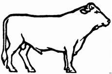 malvorlagen gratis kuh kuh der seite ausmalbild malvorlage tiere