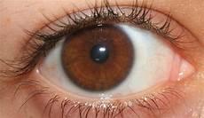 Eye Color And Brown Makeup