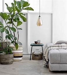 Chambre 224 Coucher Comment Et Quelles Plantes D Int 233 Rieur