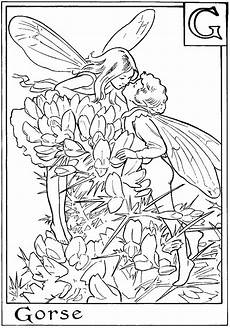 fairies coloring pages 16604 free printable coloring pages for