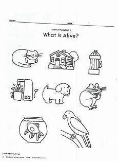 living vs non living activity i used this as an extension activity with the book alexander and