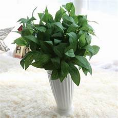 simulation 7 branches real touch bay leaf artificial plants decorative fake laurel leaf plants