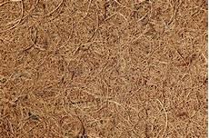 stuoia cocco priorit 224 bassa naturale della fibra di cocco immagine