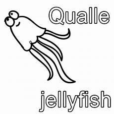 Malvorlagen Quallen Zum Ausdrucken Ausmalbild Englisch Lernen Qualle Jellyfish Kostenlos