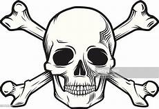 skull and bones vector getty images
