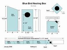 western bluebird house plans how to attract eastern bluebirds with the right foods