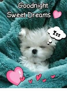 goodnight sweet dreams meme me me